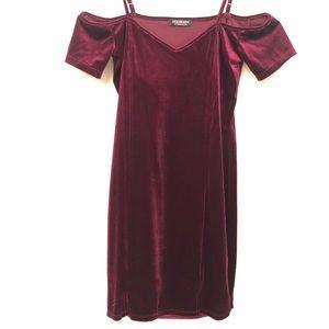 LG Burgundy Fashion Nova Dress NWOT